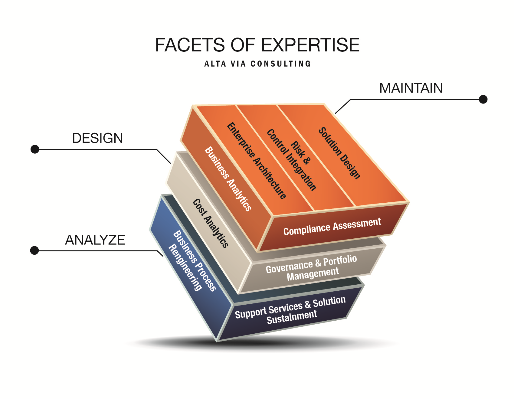 Alta Via Consulting Expertise Model
